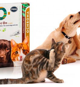 Preparat na pchły i kleszcze dla psów i kotów